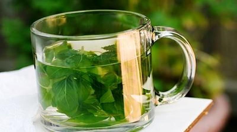 bosiljak čaj