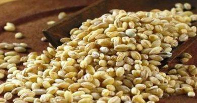 Ljekovita svojstva žitarica