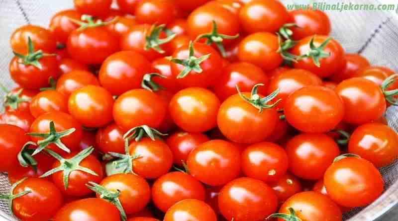 rajcica tomato Biljna Ljekarna