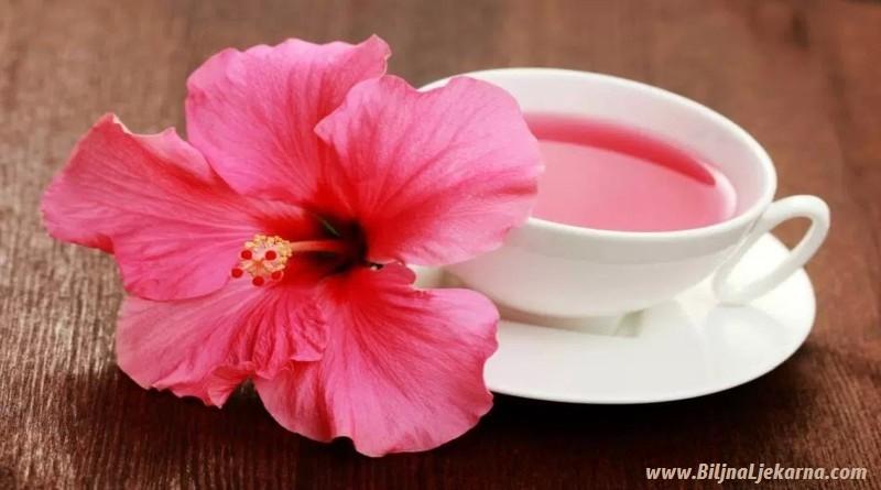 Ljekovita svojstva hibiskusa Biljna Ljekarna