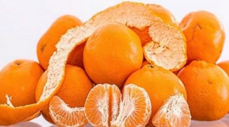 mandarine Biljna Ljekarna