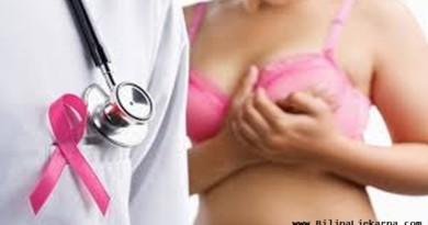 rak dojke biljna ljekarna