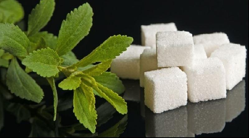 stevija šećer