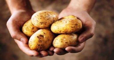 Jako zdrava namirnica - Krumpir