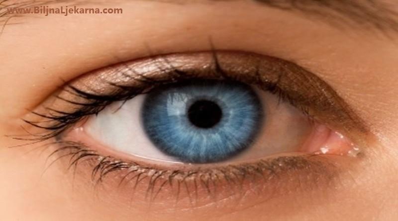 BiljnaLjekarna oko
