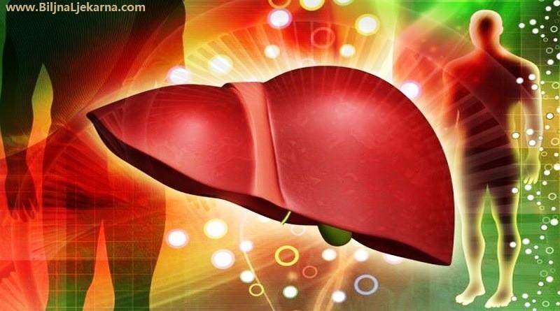 jetra Biljna Ljekarna