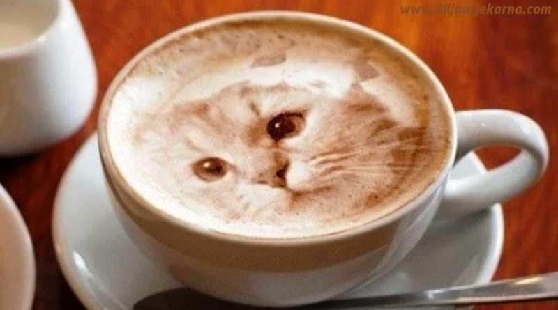 coffee Biljna Ljekarna