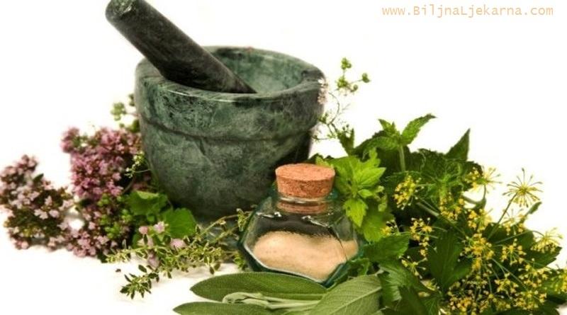 BiljnaLjekarna ljekovite biljke